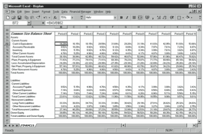 Figure 10-3. The Common Size Balance Sheet portion of the business planning starter workbook.