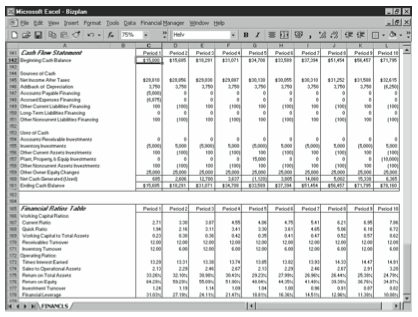 Figure 10-5. The Cash Flow Statement and Financial Ratios Table areas of the business planning starter workbook.